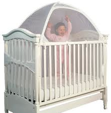 Baby in crib with net